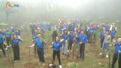 Tuổi trẻ Ngân hàng BIDV tổ chức Lễ Trồng cây đời đời nhớ ơn Bác Hồ