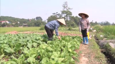 Tiểu phẩm môi trường - Tỉnh đoàn Thái Nguyên 2 - Giải Ba