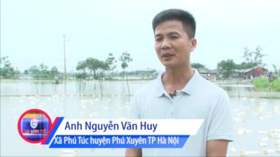 Nguyễn Văn Huy - Khởi nghiệp từ nguồn vốn NHCS XH